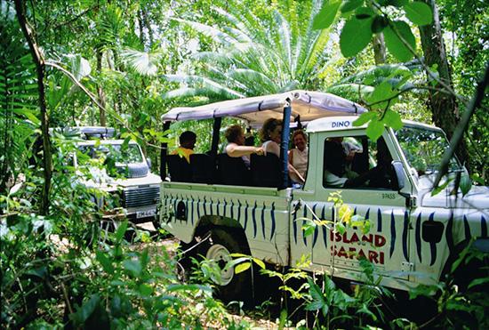 Island-Safari-Barbados